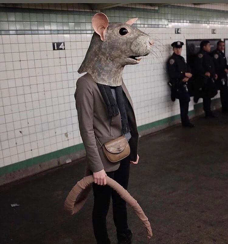Rat in The Subway
